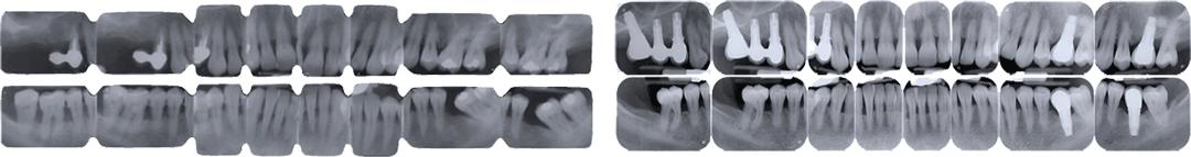 Corsi Formativi in Parodontologia Clinica. Relatore: Dott. A. Crea